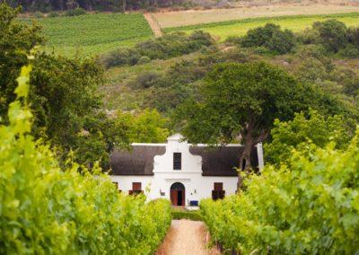 4 Domaine viticole