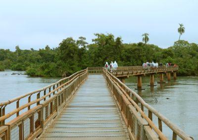 4 Passerelles dans le Parc National dIguacu