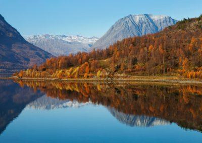 5 Ete dans le fjord norvegien