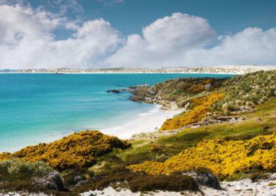 6 Gypsy Cove sur East Falkland