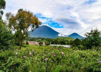 6 Vue sur le volcan Gahinga