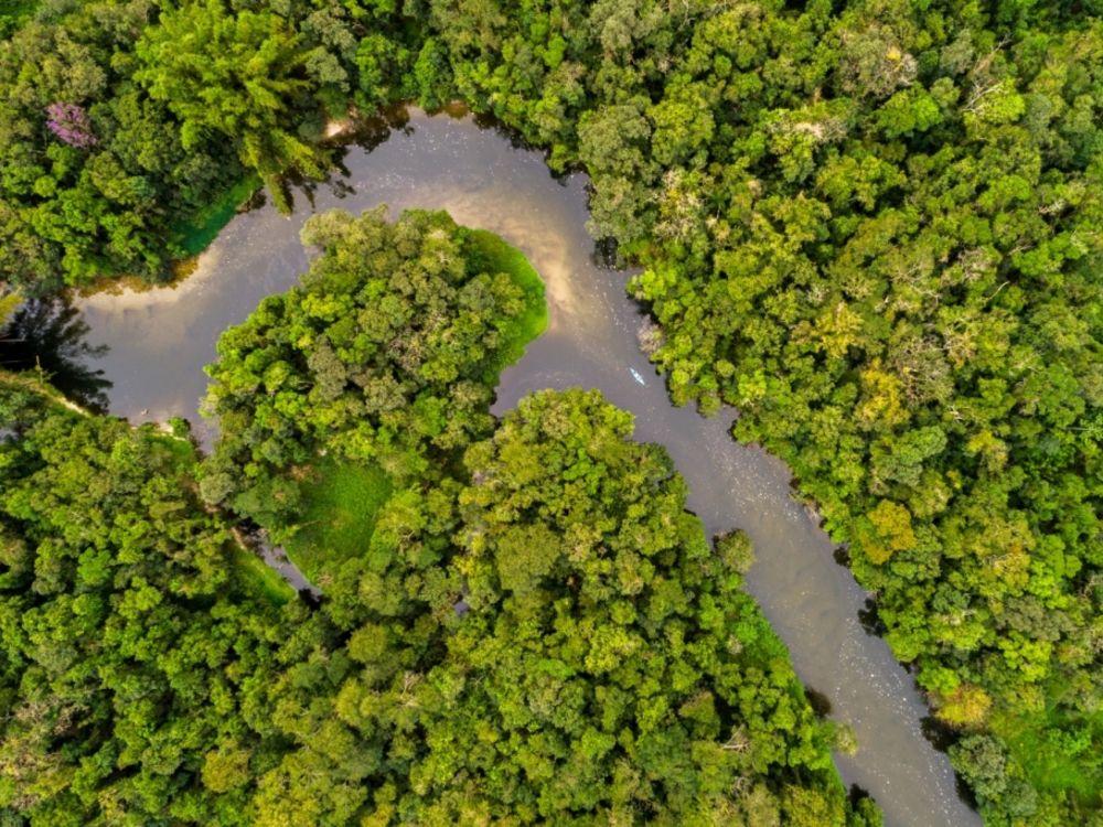 Le long fleuve Amazone