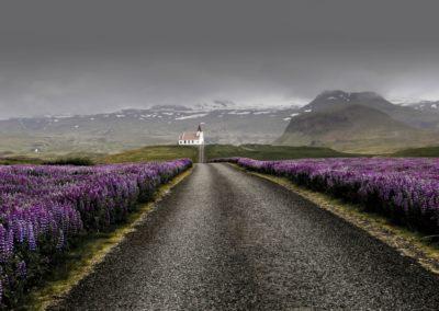 1 Campagne islandaise